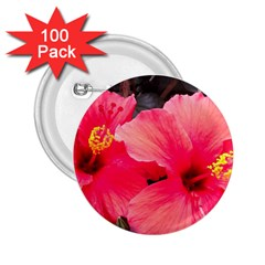 Red Hibiscus 2 25  Button (100 Pack) by ADIStyle