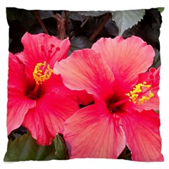 Red Hibiscus Large Cushion Case (two Sides) by ADIStyle