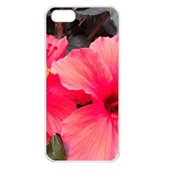 Red Hibiscus Apple Iphone 5 Seamless Case (white) by ADIStyle