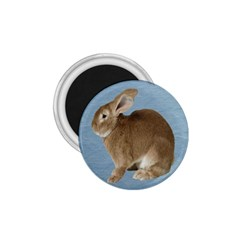 Cute Bunny 1 75  Button Magnet by mysticalimages
