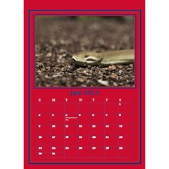 A Little Perfect Desktop Calendar By Deborah   Desktop Calendar 6  X 8 5    Fnag7i5u5k71   Www Artscow Com Jul 2017