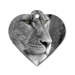 Lion 1 Dog Tag Heart (two Sided)