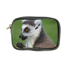 Ring Tailed Lemur  2 Coin Purse by smokeart