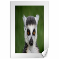 Ring Tailed Lemur Canvas 24  X 36  (unframed) by smokeart