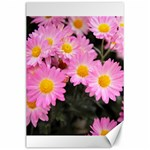 flower - Canvas 24  x 36