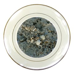 Sea Shells On The Shore Porcelain Display Plate by createdbylk