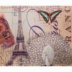 White Peacock Paris Eiffel Tower Vintage Bird Butterfly French Botanical Art Canvas 20  X 24  (unframed) by chicelegantboutique