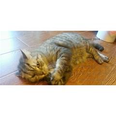 Cat 2014 By Csumkwok   Desktop Calendar 11  X 5    K4nsvtmlvu40   Www Artscow Com Aug 2014