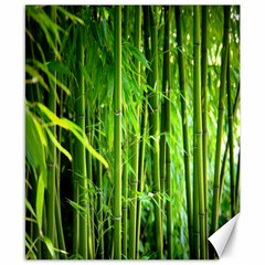 Bamboo Canvas 8  x 10  (Unframed) by Siebenhuehner