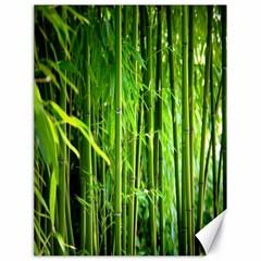 Bamboo Canvas 18  X 24  (unframed) by Siebenhuehner