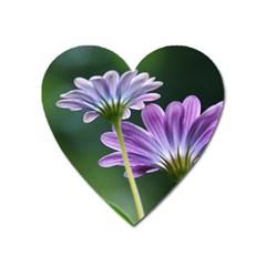 Flower Magnet (heart) by Siebenhuehner
