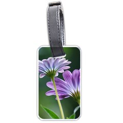 Flower Luggage Tag (two Sides) by Siebenhuehner