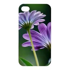 Flower Apple Iphone 4/4s Hardshell Case by Siebenhuehner