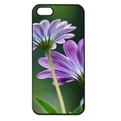 Flower Apple Iphone 5 Seamless Case (black) by Siebenhuehner