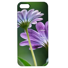 Flower Apple Iphone 5 Hardshell Case With Stand by Siebenhuehner
