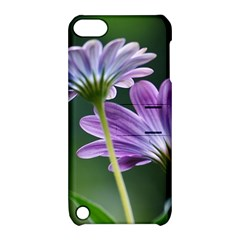 Flower Apple Ipod Touch 5 Hardshell Case With Stand by Siebenhuehner