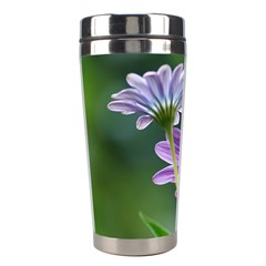 Flower Stainless Steel Travel Tumbler by Siebenhuehner