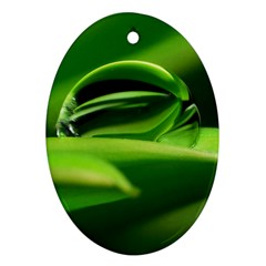 Waterdrop Oval Ornament (Two Sides)
