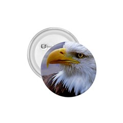 Bald Eagle 1 75  Button by Siebenhuehner