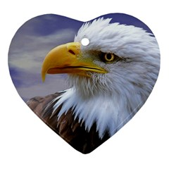 Bald Eagle Heart Ornament by Siebenhuehner