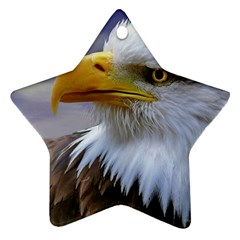 Bald Eagle Star Ornament (two Sides) by Siebenhuehner