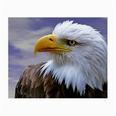 Bald Eagle Glasses Cloth (small, Two Sided) by Siebenhuehner
