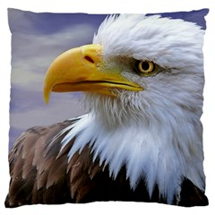 Bald Eagle Large Cushion Case (two Sided)  by Siebenhuehner