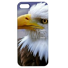 Bald Eagle Apple Iphone 5 Hardshell Case With Stand by Siebenhuehner