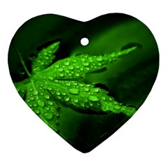 Leaf With Drops Heart Ornament (two Sides) by Siebenhuehner