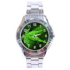 Leaf With Drops Stainless Steel Watch (men s) by Siebenhuehner