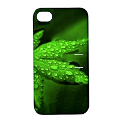 Leaf With Drops Apple Iphone 4/4s Hardshell Case With Stand by Siebenhuehner