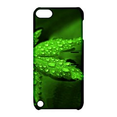 Leaf With Drops Apple Ipod Touch 5 Hardshell Case With Stand by Siebenhuehner