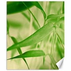 Bamboo Canvas 8  X 10  (unframed) by Siebenhuehner