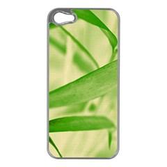 Bamboo Apple Iphone 5 Case (silver) by Siebenhuehner