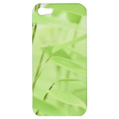 Bamboo Apple Iphone 5 Hardshell Case by Siebenhuehner