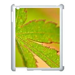 Leaf Apple Ipad 3/4 Case (white) by Siebenhuehner