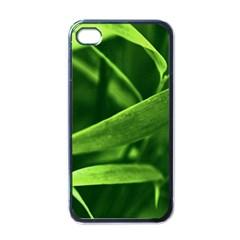 Bamboo Apple Iphone 4 Case (black) by Siebenhuehner