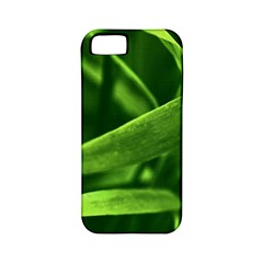 Bamboo Apple Iphone 5 Classic Hardshell Case (pc+silicone) by Siebenhuehner