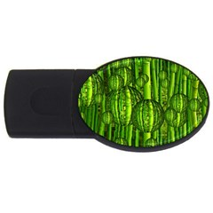 Magic Balls 2gb Usb Flash Drive (oval) by Siebenhuehner