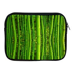 Bamboo Apple Ipad 2/3/4 Zipper Case by Siebenhuehner
