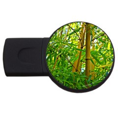 Bamboo 2gb Usb Flash Drive (round) by Siebenhuehner