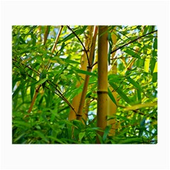 Bamboo Glasses Cloth (small) by Siebenhuehner