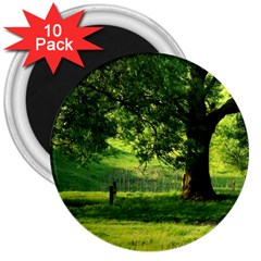 Trees 3  Button Magnet (10 Pack) by Siebenhuehner