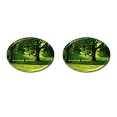 Trees Cufflinks (oval) by Siebenhuehner