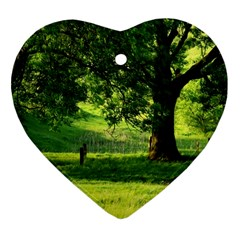 Trees Heart Ornament (two Sides) by Siebenhuehner