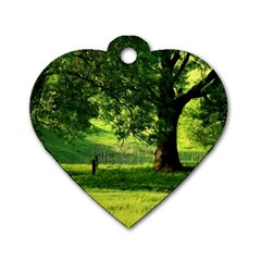 Trees Dog Tag Heart (one Sided)  by Siebenhuehner