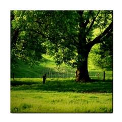 Trees Face Towel by Siebenhuehner