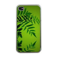 Leaf Apple Iphone 4 Case (clear) by Siebenhuehner
