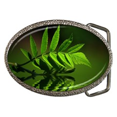 Leaf Belt Buckle (oval) by Siebenhuehner