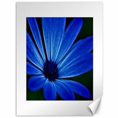 Flower Canvas 36  X 48  (unframed) by Siebenhuehner